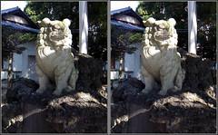 DSCF4267 諏訪神社 狛犬 (parallel 3D) - by yoshing_BT