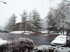 Snow - 12-4-10
