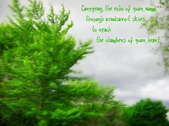 Windswept Skies (SeaScapes12) Tags: summer blur green love nature june writing typography words soft poetry thought poem wind poetic romance casio breeze exilim picnik longing mywords creativewords
