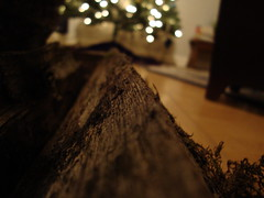 Wood. (SarahHeyyyo) Tags: wood tree texture lights fireplace