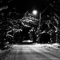 Light Spirit (RTsubin) Tags: world road county street winter light snow night forest canon square lens outside town photo nice europe long exposure tallinn estonia shot image pics outdoor low release picture location best cameras lovely ef 1740mm cabel vilage 500d harjumaa 500x500 harju canon1740mml t1i