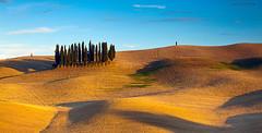 Val D'Orcia Dream (lucagiustozzi.com) Tags: tuscany toscana valdorcia
