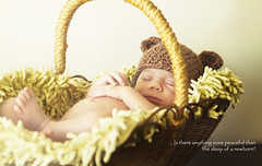 Peaceful sleep... (Anderson Bragana) Tags: basket sleep lucas 7d basketflower peacefulsleep canoneos7d andersonbragana