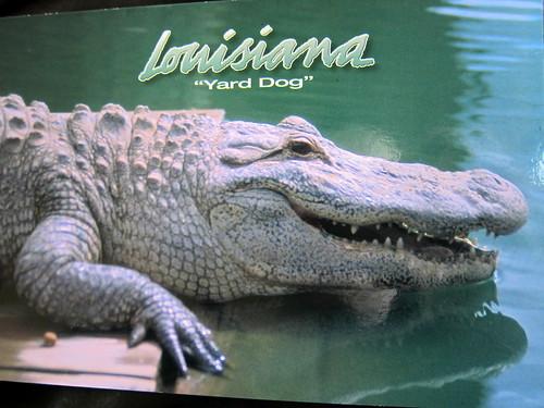 a postcard I sent