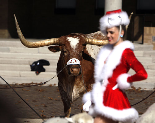 Rockette and Bevo