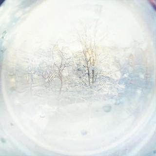 Wandering in a winter intermezzo