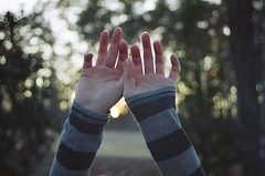 <><><>><><><><><><><><><> (Taylor+Stevens) Tags: trees sky sun film set shirt hands woods long arms bokeh fingers explore frontpage striped sleve