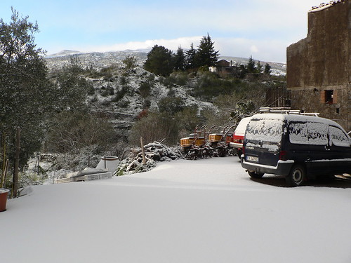 Solicchiata sotto la neve
