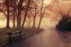 Going Away (Hadi Al-Sinan Photography) Tags: park mist fog photoshop canon photography mark leed leeds foggy going away hyde ii 5d woodhouse f28 2010 hadi 2470mm cs5 alsinan