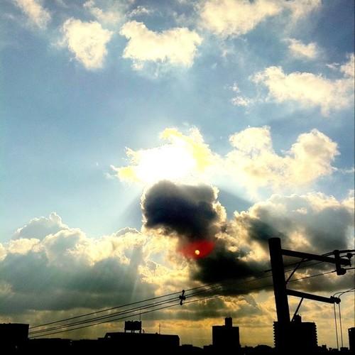 今日の写真 No.115 – 昨日Instagramに投稿した写真(3枚)/iPhone4 + Photo fx
