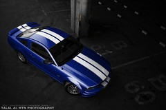 (Talal Al-Mtn) Tags: blue ford car photography cobra parking automotive shelby mustang gt fordmustang v8 mustangs bule 2010 supercharged stange svt mustanggt 3v q8 lx kwt   mustangsvt mustangcobra 50l mustanglx mustang50 4v mustangshelby 46l  bluemustang  lm10 kuwaitphotography mustangv8 superchargedmustang mustang2010 almtn talalalmtn  mustanginkuwait talalalmtnphotography mustang2011 fordmustangsupercharged supersneak phtotographybytalalalmtn automotivesphotography mustangsupercharged cammedmustang talalalmtnmustang bluestange