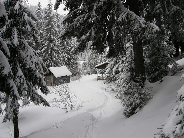 Poveste de iarna