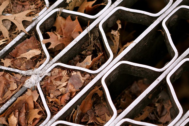 grated leaves