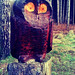 Wooden Owl in Haw Wood - Scott Dunwoodie