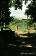 Afgoi, Somalia (aikassim) Tags: farm huts agriculture somalia hornofafrica eastafrica  afgooye  afgoi shebeelahahoose