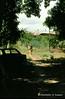 Afgoi, Somalia (aikassim) Tags: farm huts agriculture somalia hornofafrica eastafrica مزرعة afgooye الصومال afgoi shebeelahahoose