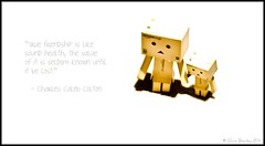 Friendship... (Chris J Bowley) Tags: camera canon project toy toys photography friendship little quote mini days tiny figure 365 16th danbo project365 550d revoltech danboard danbo365