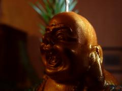 laughing buddha (floriankohl) Tags: buddha christmastreedecorations christbaumschmuck