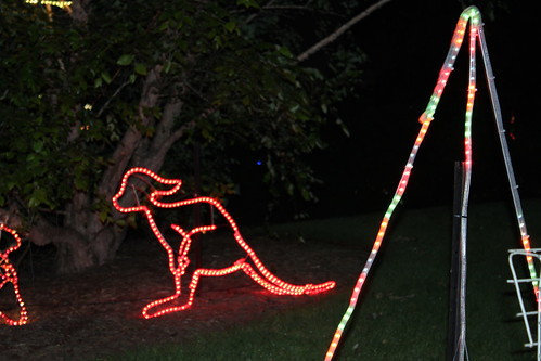 Australian Christmas Lights