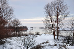Winter in Holland (RuudMorijn) Tags: schnee winter sky snow holland water netherlands dutch rio gua river landscape bomen colorful eau wasser hiver sneeuw nederland himmel shades paisagem cu ciel neve holanda neige hank paysage fluss inverno fragile paysbas landschap farben niederlande kleurrijk fleuve color noordbrabant frgil tons riverbanks koud kleur winterlandschaft fragiel rivier coloridos nuances bunten    rives oever zerbrechlich flussufer margens subtile niederlndisch fragiles  holands    subtiel nerlandaise bergschemaas   rivieroevers oudemaasje