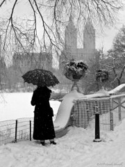 The Lady and the Black Umbrella (CVerwaal) Tags: nyc newyorkcity winter woman snow newyork mystery lady lumix centralpark mysterious twintowers umbrellas sanremo lumixlx3