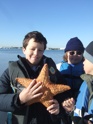 Luca with a cushion starfish