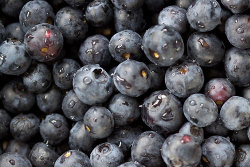 Blueberry Pile
