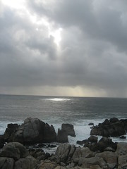 """17Mile Drive"" CA storm by no pintamos nada"