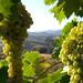 Villino con vista panoramica 8 persone