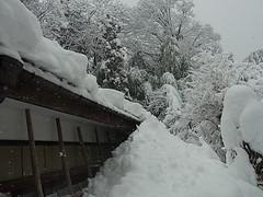 雪に埋まる家