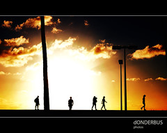 014/365 The Walk of Life... (donderbus) Tags: sunset people urban sun tree beach lamp silhouette clouds pen project walking hawaii oahu olympus honolulu 365 alamoana odc epl1 ourdailychallenge