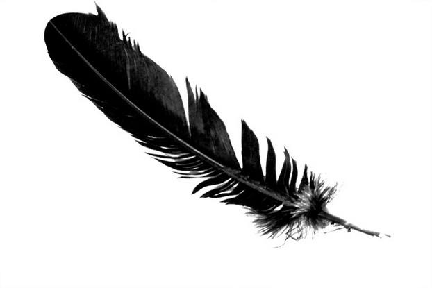 feather3e