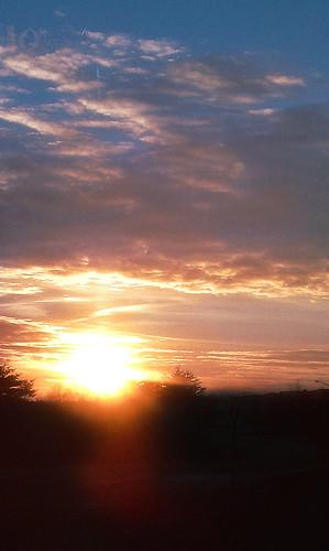 sunset 1.14.11