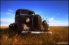 Retired (Clayton Perry Photoworks) Tags: old sky ford rural truck vintage decay farm wheat grain alberta prairie plains prairies hdr 1939 lethbridge worldcars
