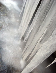 winter (Tamara R.) Tags: winter ice nature water frozen upstate icicles