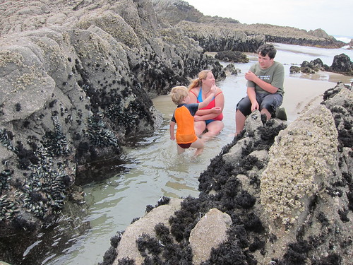 William, Emma and David in a rock pool
