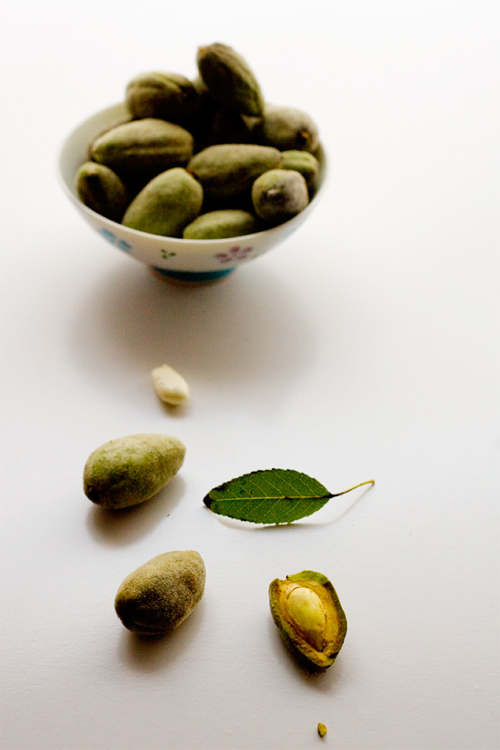 fresh-almonds