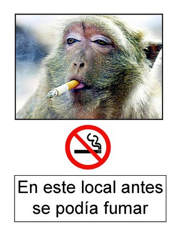 local prohibido fumar