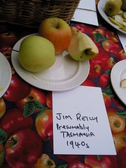 Jim Reilly Apple