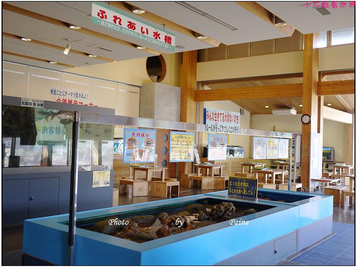 鳥取賀露螃蟹學習館 (4).JPG
