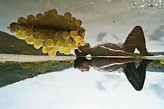 Grapes (JL) Tags: grape grapes sky skies reflex reflection reflections reflejo yo myself me water agua