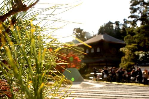 銀閣寺の紅葉