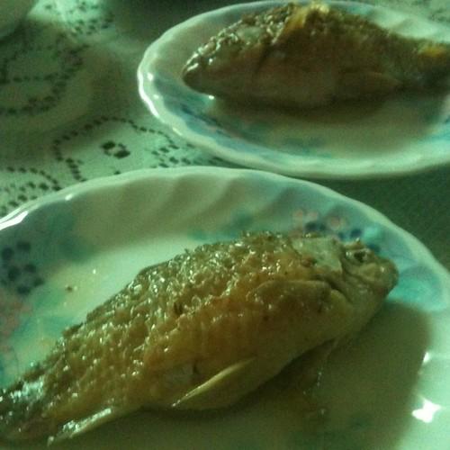 鯽魚,今天去魚市場買的!好好吃!