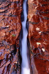 Crimson Sandstone (CDeahr23) Tags: utah canyonlands zion zionnationalpark thesubway flowingwater washingtoncountyut leftforkcreek