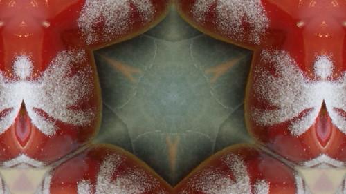 Snow Cranberry