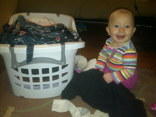 laundry nugget