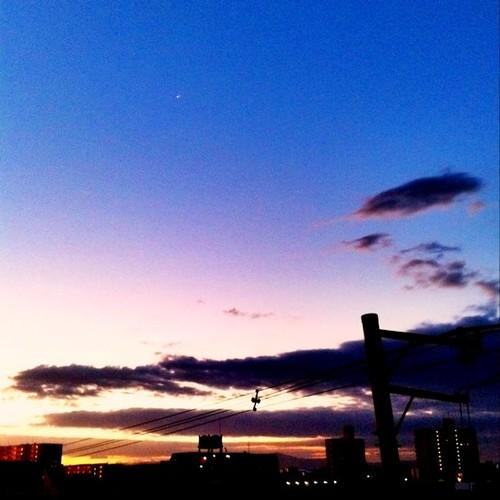 今日の写真 No.101 – 昨日Instagramに投稿した写真(4枚)/iPhone4 + Photo fx
