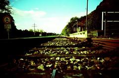 the railway   LC-A+ (lomostream) Tags: sun analog train iso100 lomo lca xpro lomography cross rail lomolca trainstation crossprocessing agfa xprocessing ctprecisa ratseyeview agfact agfactprecisaiso100