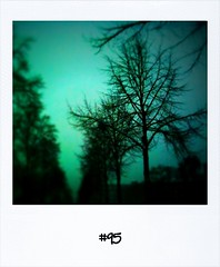 "#Yesterdays #DailyPolaroid #95 • <a style=""font-size:0.8em;"" href=""http://www.flickr.com/photos/47939785@N05/5283989856/"" target=""_blank"">View on Flickr</a>"