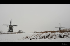 Freezing cold..... 3 (Just me, Aline) Tags: snow cold holland mill ice netherlands sneeuw nederland explore mills kinderdijk molen ijs koud molens freezingcold
